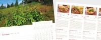 Nástěnný kalendář Jeseníky 2011 - jesenické recepty