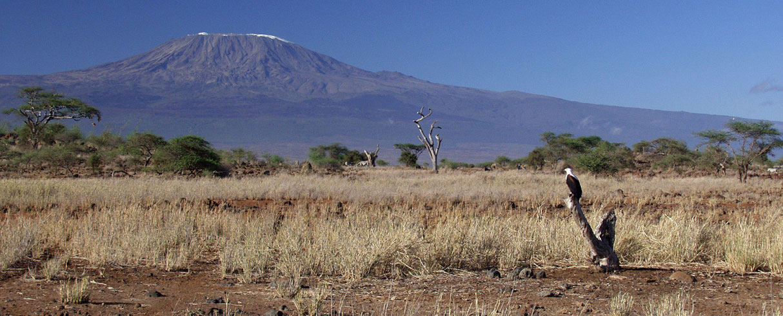 Kilimanjaro z keňské strany, Tsavo, Keňa