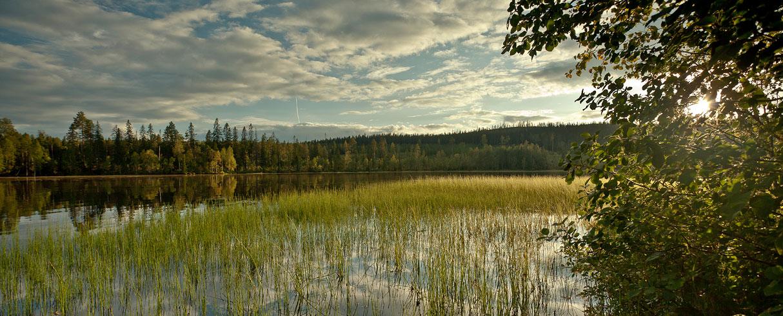 Jezero Bygdeträsket - Švédsko